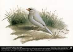 "Pintura ""Un ave"" - Óleo sobre lienzo; artista Kamal ol-Molk (25)"