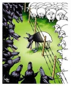 アメリカの民主主義(漫画)