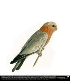 Dibujo de un ave. Pintado sobre las paredes del Palacio de Cuarenta Pilares en Isfahán. ; Pintura de Kamal ol-Molk (3)
