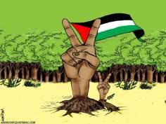 La resistente lucha de liberación Palestina (Caricatura)