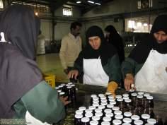 La mujer en la producción (2)- mujer musulmana y trabajo
