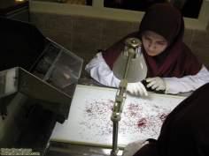 Iranische Frauen beim herstellen von Saffran - Die muslimische Frau und die Arbeit - Foto