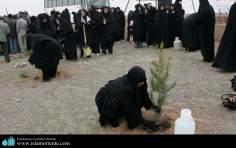 Die muslimische Frau und ihre Rolle in der Gesellschaft