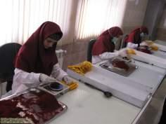 مسلمان خواتین اور معاشرہ - حجاب کے ساتھ زعفران کی پیداواری اور کاموں میں شریک