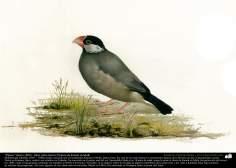 """""""Pájaro"""" (hacia 1890) - Óleo sobre lienzo; Pintura de Kamal ol-Molk (7)"""