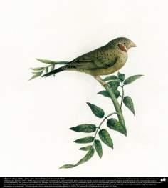"""Art islamique - peinture à l'huile sur toile - artiste: Kamal-ol-molk -""""Oiseau sur une branche """"(environ 1902) -15"""
