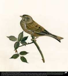 "Pintura ""Un ave"" - Óleo sobre lienzo; artista Kamal ol-Molk (16)"