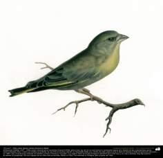"Pintura ""Un ave"" - Óleo sobre lienzo; artista: Kamal ol-Molk (9)"