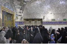 Мусульманская женщина - Религиозная деятельность мусульманских женщин - Святой храм Имама Резы (мир ему)  - Мешхед , Иран - 95