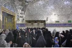 Sala Dar ash-Sharaf (Casa del Honor) - Santuario del Imam Rida (P) - 69