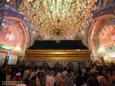 Sanctuaire de l'Imam Ali (P), des pelerins en visite, Najaf, Irak - 17