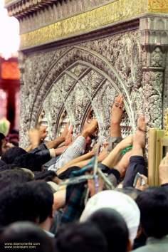 Santuario del imam Reda (a.s) / Tumba en la ciudad santa de Mashhad - 101