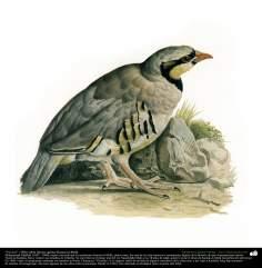 """Un ave"" - Óleo sobre lienzo; artista: Kamal ol-Molk"
