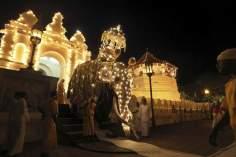 Un elefante adornado en un temple en Sri Lanka