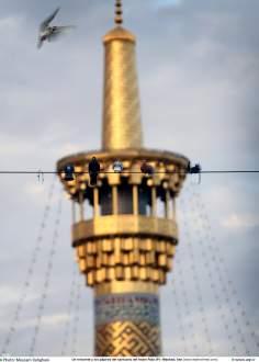 معماری اسلامی - نمایی از مناره حرم مطهر امام رضا (ع) - قدس رضوی در شهرستان مقدس مشهد، ایران - 100