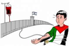 Caricaturas hemofilia - Palestina