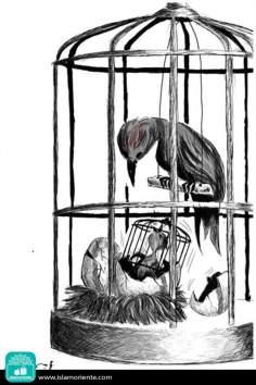 Esperanza frustrada (Caricatura)