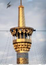 Un minarete y los pájaros del santuario del Imam Rida (P)- Mashad- 100