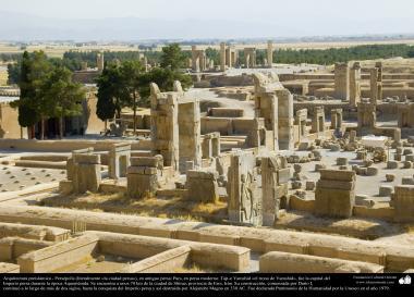 Arquitectura Preislámica - Persépolis, o Pars o Tajt-e Yamshid «el trono de Yamshid», cerca de Shiraz - 37