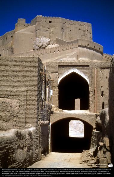 Arquitectura preislámica- Una vista de Arg-é Bam (Ciudadela de Bam). Era la mayor construcción de adobe del mundo-500 aC. Kerman - 17