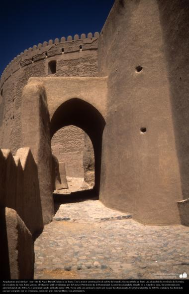 Arquitectura preislámica- Una vista de Arg-é Bam (Ciudadela de Bam). Era la mayor construcción de adobe del mundo-500 aC. Kerman - 26