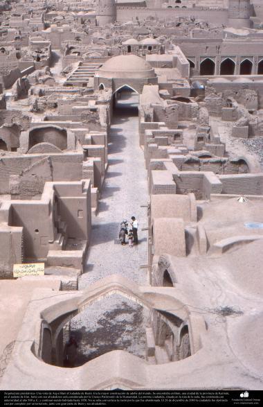 Arquitectura preislámica- Una vista de Arg-é Bam (Ciudadela de Bam). Era la mayor construcción de adobe del mundo-500 aC. Kerman - 18