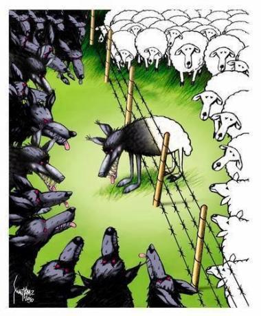 Democracia americana (caricatura)