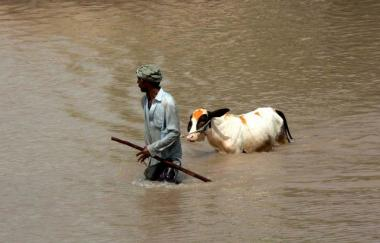 Inundação em Panjab, Pakistão