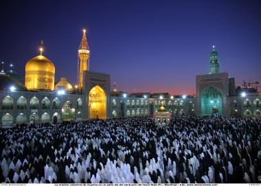 مسلمان خواتین اور معاشرہ - امام رضا(ع) کے روضہ پر مسلمان خواتین حجاب کے ساتھ نماز میں مشغول - شہر مشہد، ایران - ۱۰۵