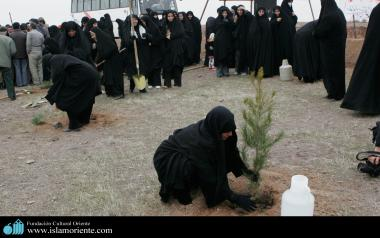 Mulher muçulmana e sociedade
