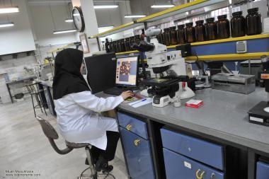 Работа мусульманских женщин - Лаборатория