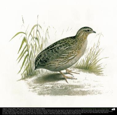 """""""Pájaro"""" (hacia 1903) - Óleo sobre lienzo; Pintura de Kamal ol-Molk (5)"""